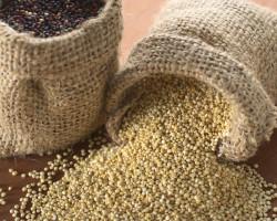 Starodavna zdravilna skrivnost – Kvinoja